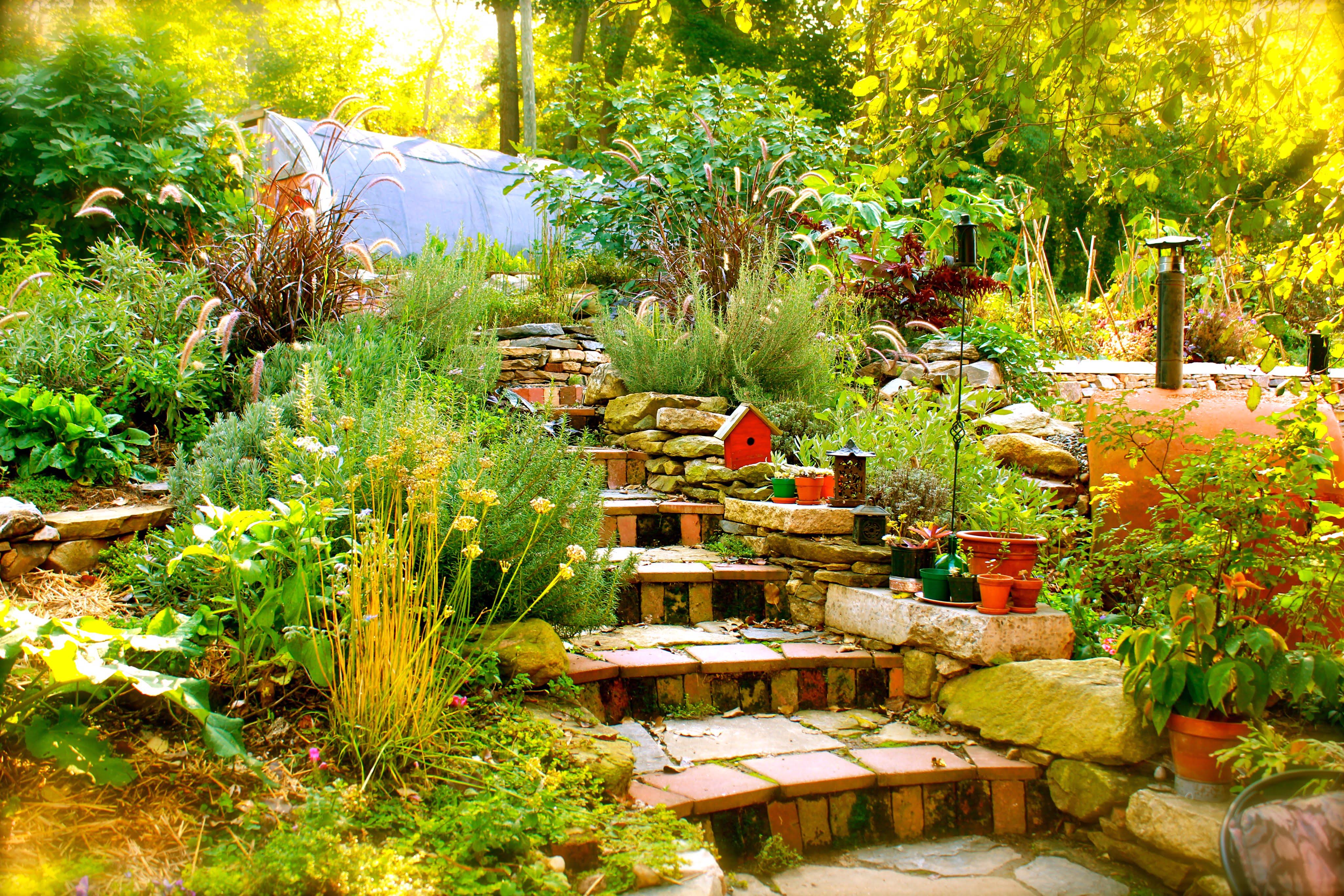 Properties 3 & 4: Terrace garden